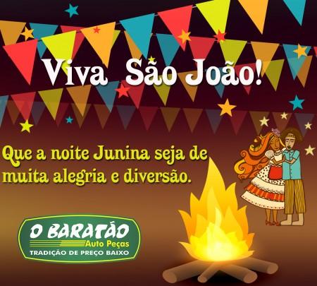 Viva São João!!!